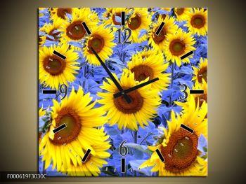Obraz slunečnic (F000619F3030C)