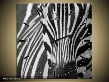 Obraz černobílého detailu zebry (F000715F3030C)