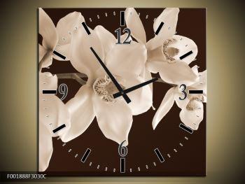 Krásný obraz bílých květin (F001888F3030C)