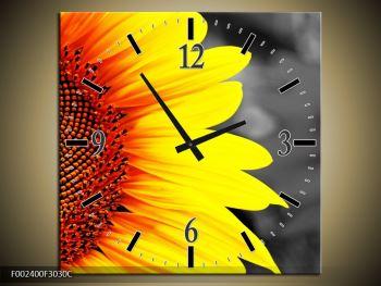 Obraz květu slunečnice (F002400F3030C)