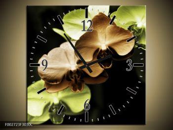 Obraz hnědých a zelených orchideí  (F002723F3030C)