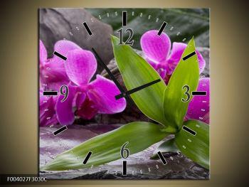 Obraz fialových orchidejí s listím (F004027F3030C)