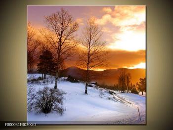 Obraz zimní krajiny (F000031F3030GD)