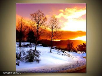 Obraz zimní krajiny (F000192F3030GD)