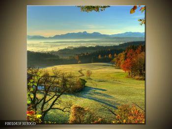 Krásný obraz podzimní krajiny (F001043F3030GD)