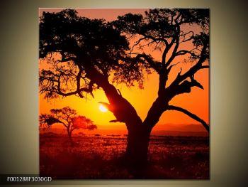 Obraz ohnivého západu slunce (F001288F3030GD)