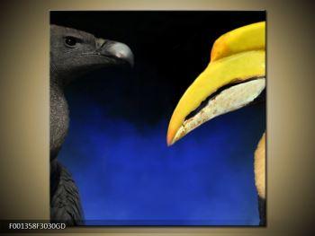 Obraz ptačích zobáku (F001358F3030GD)