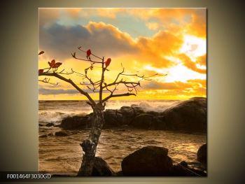 Obraz suchého stromu (F001464F3030GD)