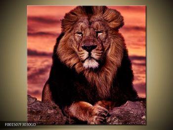 Obraz krále zvířat (F001507F3030GD)