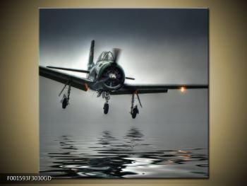 Obraz letadla  (F001593F3030GD)