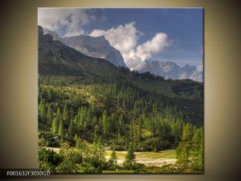Krásný obraz hor (F001632F3030GD)