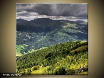 Obraz horského údolí (F001635F3030GD)