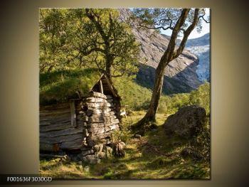Obraz horské chatrče (F001636F3030GD)
