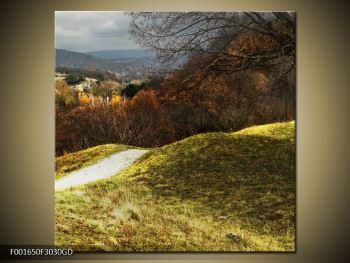 Obraz podzimního pahorku (F001650F3030GD)