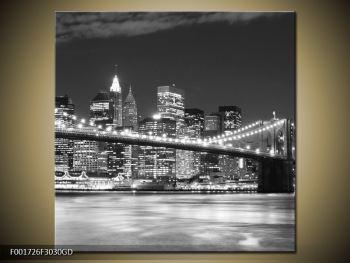Obraz černobílého města (F001726F3030GD)