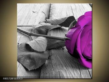 Obraz růže (F001728F3030GD)