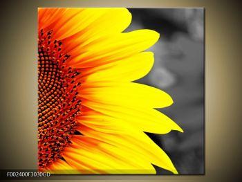 Obraz květu slunečnice (F002400F3030GD)
