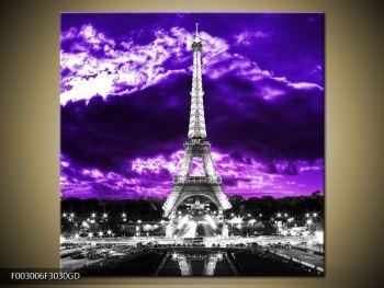Obraz Eiffelovy věže v Paříži (F003006F3030GD)