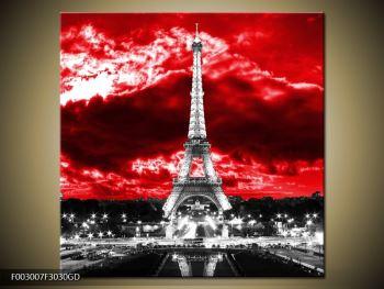 Obraz Eiffelovy věže v Paříži (F003007F3030GD)