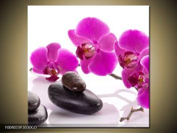 Obraz fialových květů s kameny (F004019F3030GD)