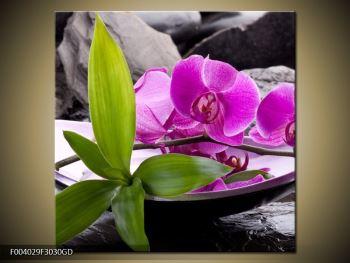 Obraz fialových orchidejí v míse (F004029F3030GD)