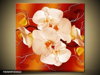 Obraz bílých orchidejí (F005694F3030GD)