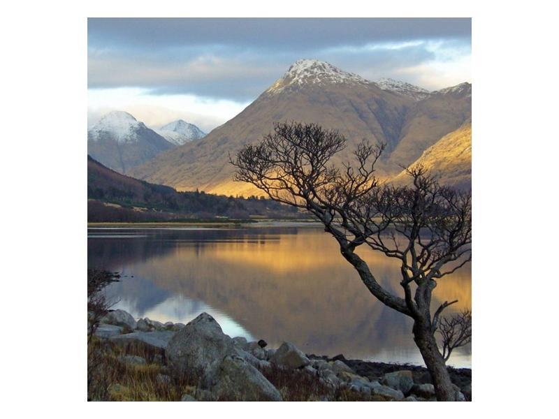 Obraz hor u jezera (F000686F4040)