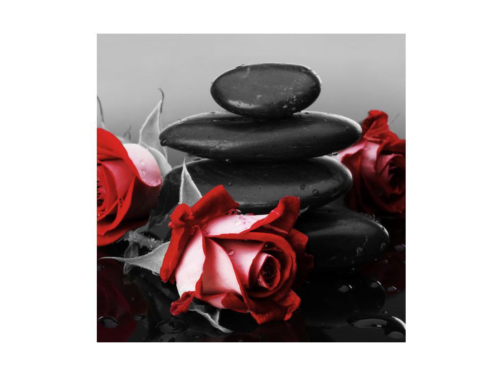 Obraz růže (K011705K4040)