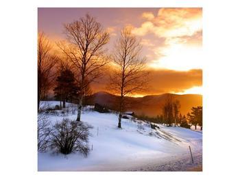 Obraz zimní krajiny (F000031F4040)