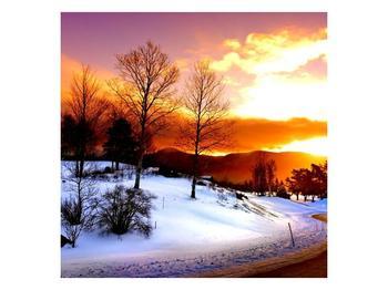 Obraz zimní krajiny (F000192F4040)