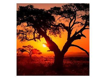 Obraz ohnivého západu slunce (F001288F4040)