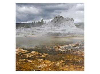 Obraz jev přírody (F001553F4040)