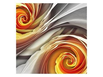 Abstraktní obraz - spirál (F001693F4040)