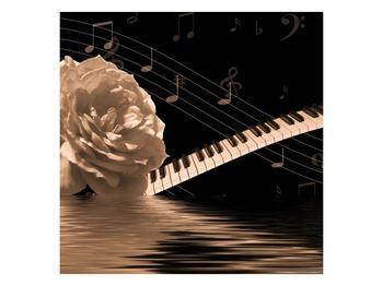Černobílý obraz růže a klavíru (F001875F4040)