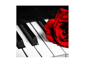 Zongora és egy rózsa képe (K011229K4040)
