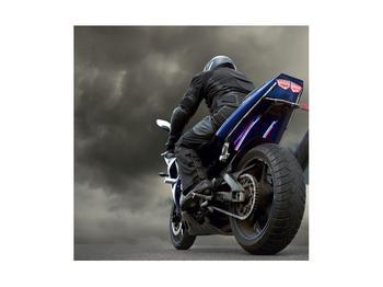 Tablou cu motociclist cu motocicletă (K011302K4040)