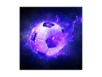 Tablou cu mingea de footbal în plasă (K014164K4040)