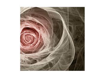 Abstraktní obraz růže (K014988K4040)