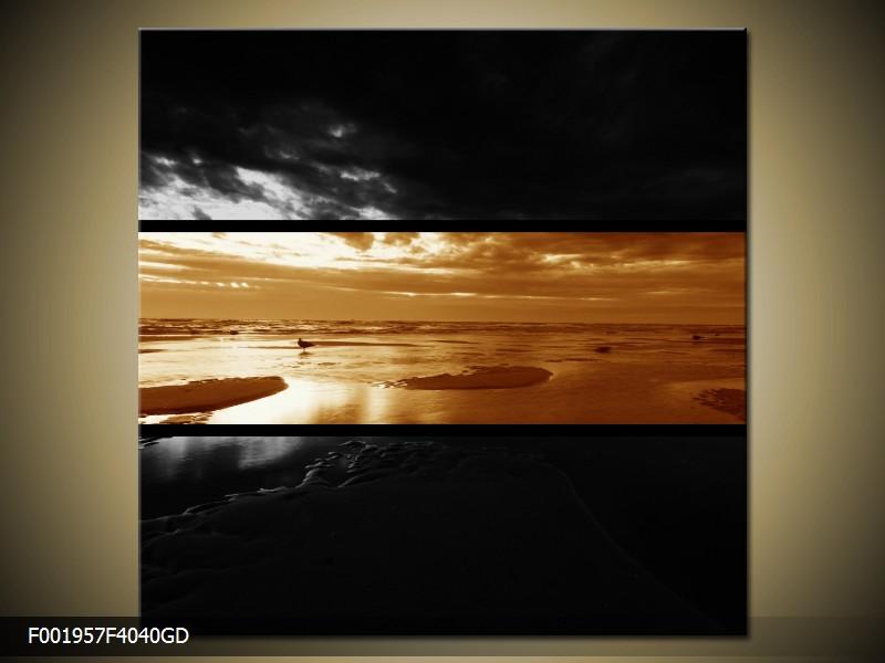 Dvroubarevný obraz moře (F001957F4040GD)
