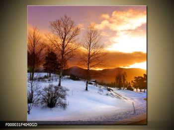 Obraz zimní krajiny (F000031F4040GD)