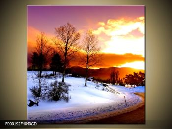 Obraz zimní krajiny (F000192F4040GD)