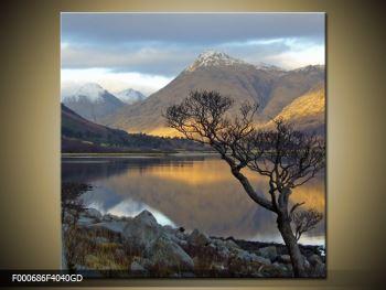 Obraz hor u jezera (F000686F4040GD)