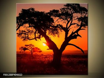 Obraz ohnivého západu slunce (F001288F4040GD)