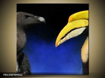 Obraz ptačích zobáku (F001358F4040GD)