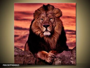 Obraz krále zvířat (F001507F4040GD)