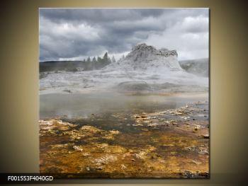 Obraz jev přírody (F001553F4040GD)