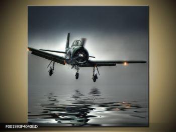 Obraz letadla  (F001593F4040GD)