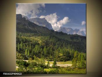 Krásný obraz hor (F001632F4040GD)