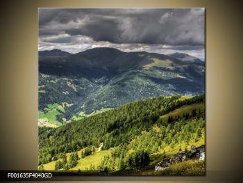 Obraz horského údolí (F001635F4040GD)
