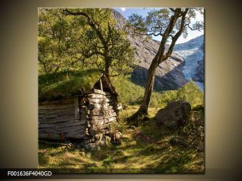 Obraz horské chatrče (F001636F4040GD)